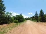6447 Thunderbird Road - Photo 12