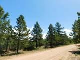 6447 Thunderbird Road - Photo 8