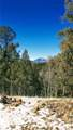 176 Horse Creek Circle - Photo 36