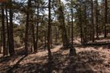 000 Ponderosa Trail - Photo 14
