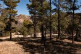 000 Ponderosa Trail - Photo 15