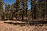 000 Ponderosa Trail - Photo 16