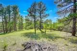 24400 High Timber Lane - Photo 1