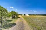 24400 High Timber Lane - Photo 3