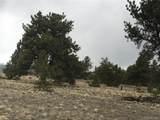 002 Guipago Trail - Photo 11
