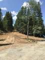 27348 Squaw Pass Road - Photo 10