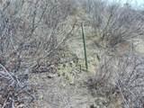 Colorado Hwy 119 - Photo 25