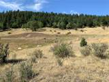 14704 Wetterhorn Peak Trail - Photo 12