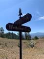 14704 Wetterhorn Peak Trail - Photo 16