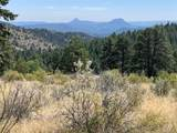14704 Wetterhorn Peak Trail - Photo 2