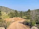 14704 Wetterhorn Peak Trail - Photo 24