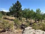 14704 Wetterhorn Peak Trail - Photo 5