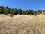 14704 Wetterhorn Peak Trail - Photo 9