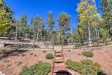 1011 Bison Creek Trail - Photo 36