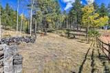 1011 Bison Creek Trail - Photo 6