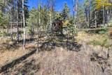 1011 Bison Creek Trail - Photo 7