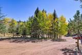 1011 Bison Creek Trail - Photo 9