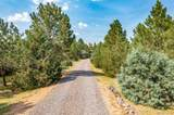 6591 Ponderosa Drive - Photo 34