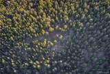 13500 Powhatan Trail - Photo 11