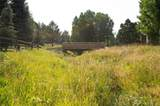 2956 Sun Creek Ridge - Photo 33