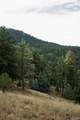 4201 Hilltop Road - Photo 8
