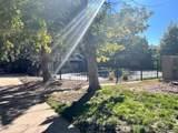 5300 Cherry Creek South Drive - Photo 3