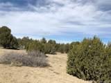 Pine Bluff Drive West Bluff - Photo 31