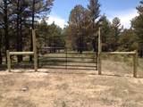 40122 Onyx Trail - Photo 20