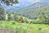 26054 Centennial Trail - Photo 31