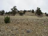 901 Elkhorn View Drive - Photo 4