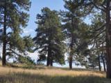 10559 Shadow Pines Road - Photo 1