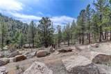 15747 Elk Creek Road - Photo 38
