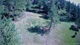 4781 Mohawk Drive - Photo 6