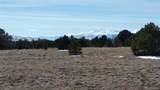 1613 20th Trail - Photo 6