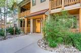 31256 Stone Canyon Road - Photo 4