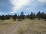 1525 Tibby Trail - Photo 17