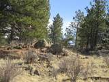 1525 Tibby Trail - Photo 6