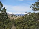 1525 Tibby Trail - Photo 7