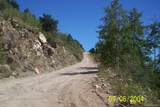 Columbine Road - Photo 2