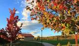 4990 Coltin Trail - Photo 8