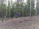 8467 Spirit Horse Trail - Photo 11
