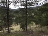 8467 Spirit Horse Trail - Photo 14