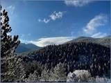 8467 Spirit Horse Trail - Photo 5