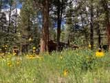 22130 County Road 292 - Photo 11
