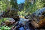 14662 Elk Creek Road - Photo 4