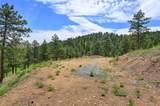 3305 Timbergate Trail - Photo 36