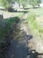 13997 County Road 162 - Photo 30