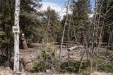 3006 Middle Fork Vista - Photo 1
