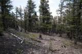3006 Middle Fork Vista - Photo 3