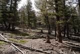 3006 Middle Fork Vista - Photo 4